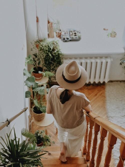 [置くだけ風水] 強運を呼びスタイリッシュなお部屋にする観葉植物8選