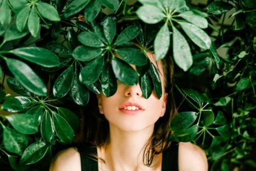 ぐっすり安眠を誘う観葉植物で芯からリフレッシュしてみない?